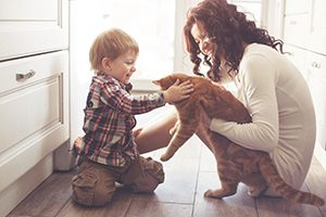 family with orange tabby cat